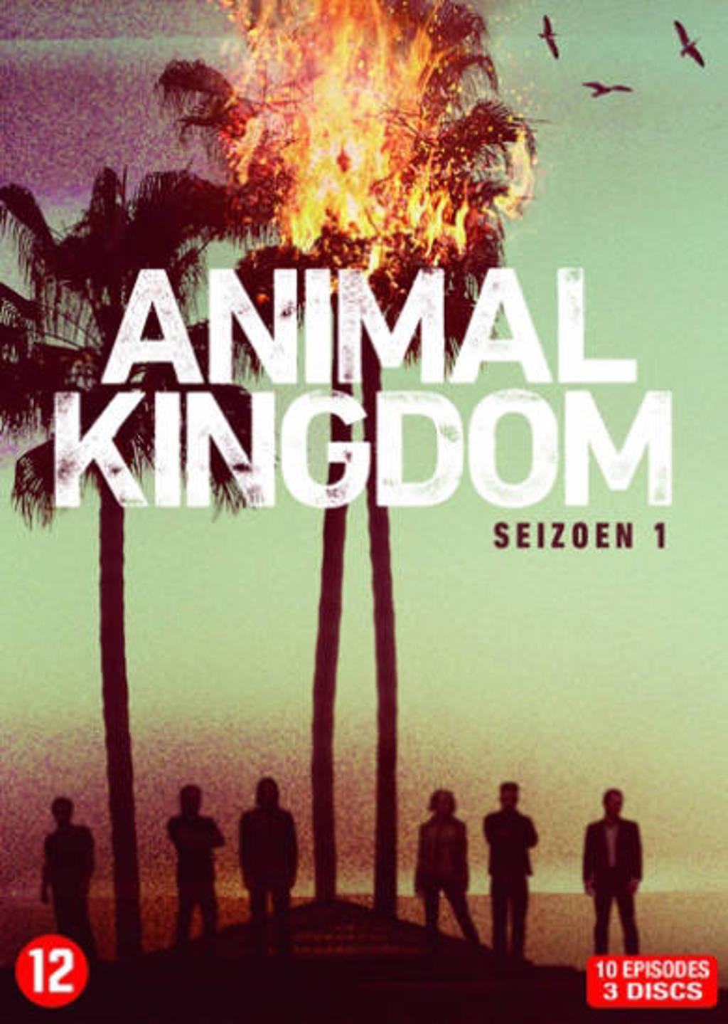 Animal kingdom - Seizoen 1 (DVD)