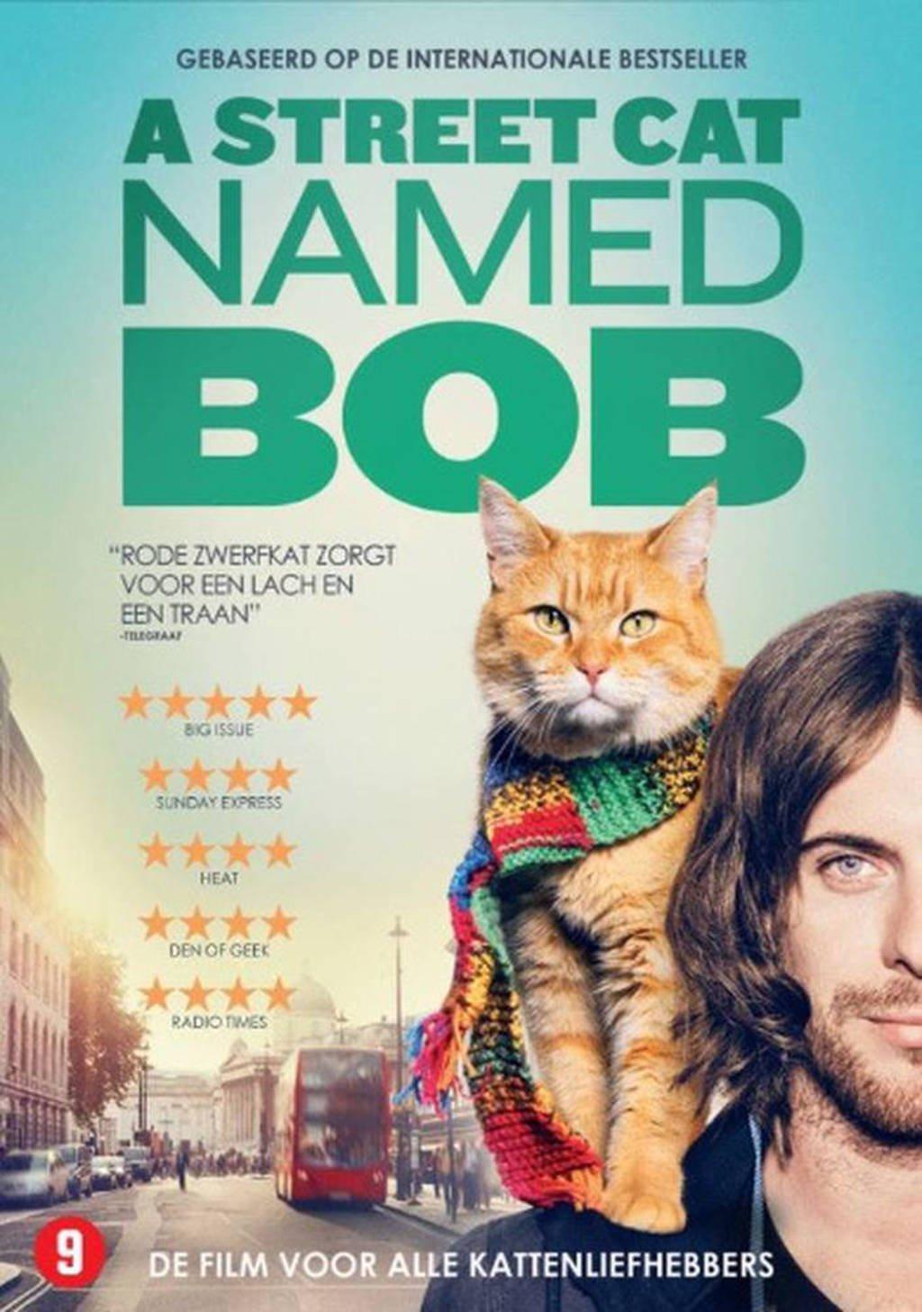 Rode Kater Zitzak.Street Cat Named Bob Dvd Wehkamp