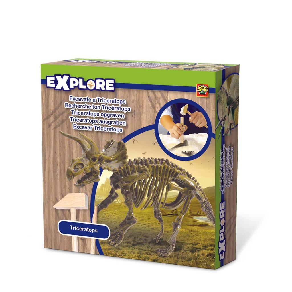 SES  bikken dino skelet Triceratops
