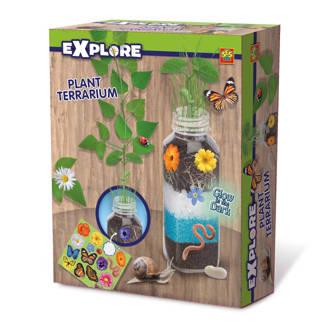 Explore  planten terrarium