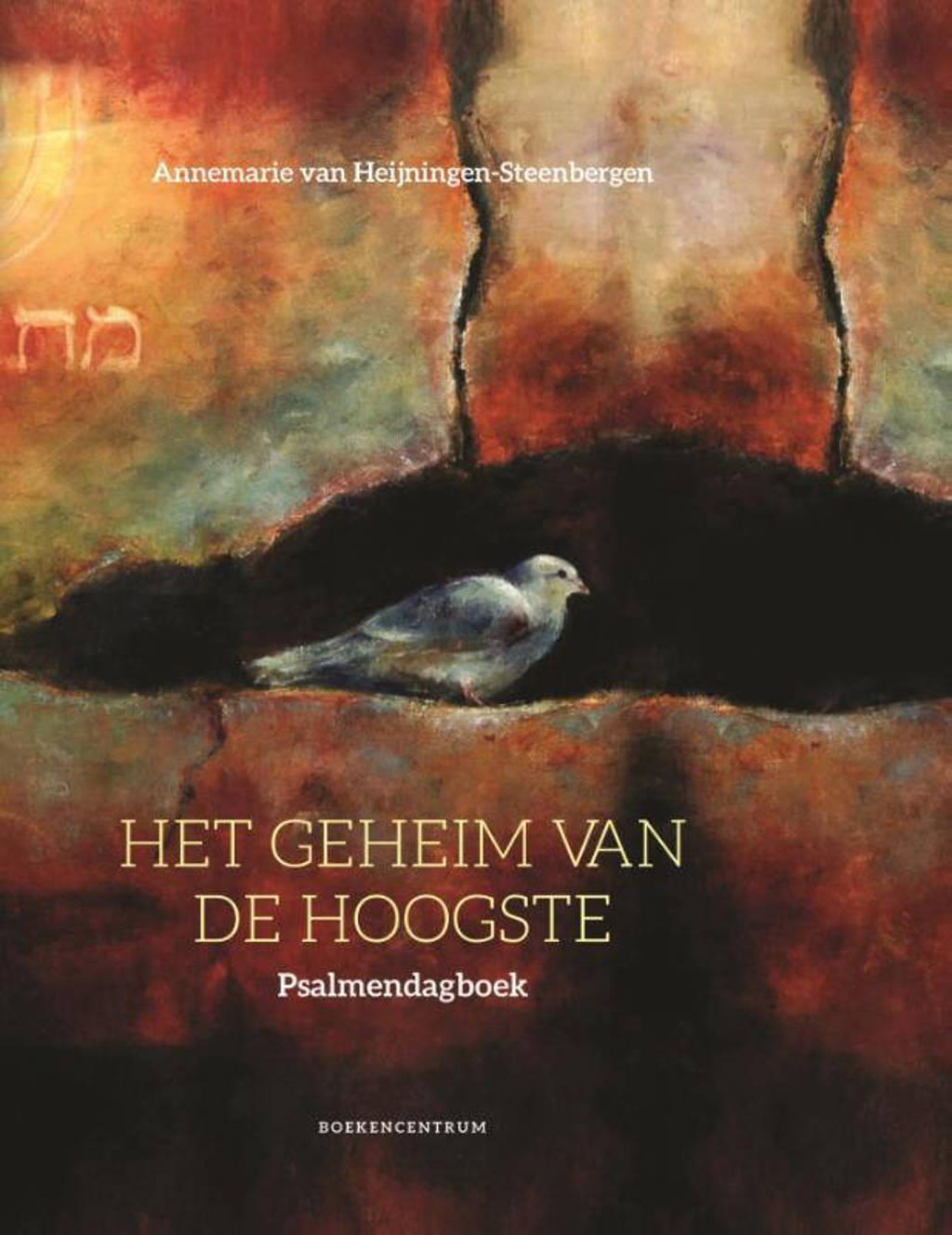 Het geheim van de hoogste - Annemarie van Heijningen-Steenbergen
